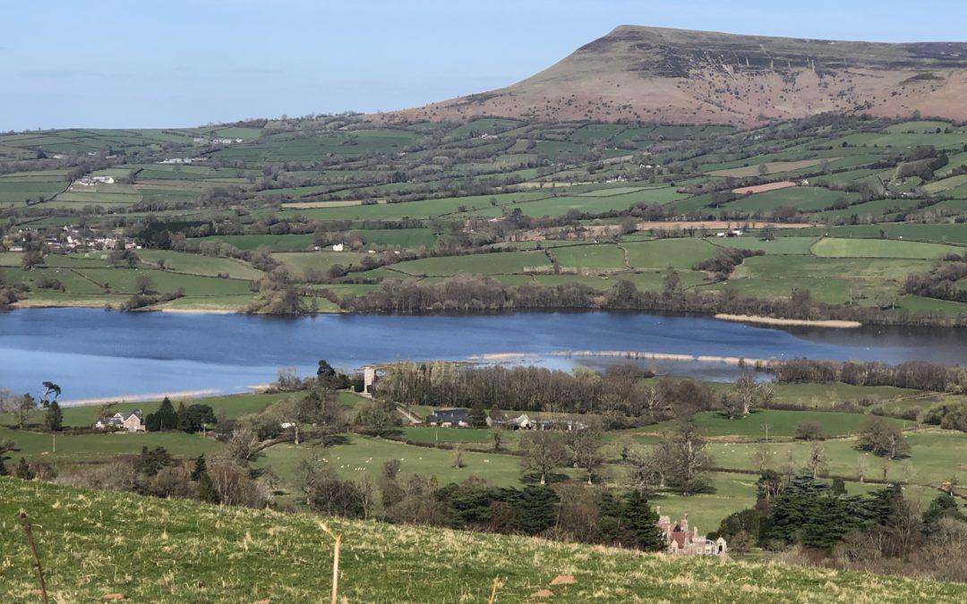 Welsh Lamb, das beste Lamm der Welt?